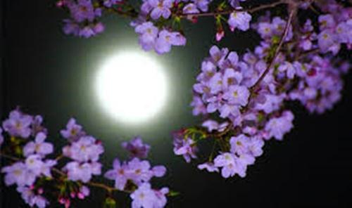 giorno di luna piena