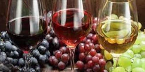 vino Cirò